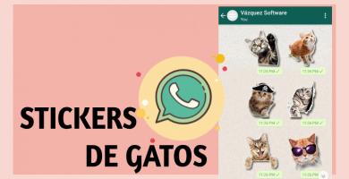 Stickers de gatos para whatsapp